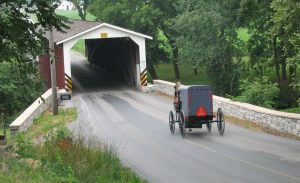 Buggy Near a Covered Bridge in Lancaster County, PA