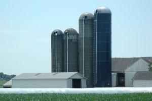 Four Silos at a Farm