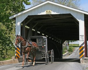 Horse and Buggy in Covered Bridge