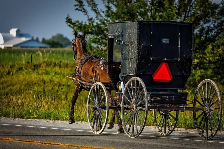 Amish buggy on the road in Lancaster County