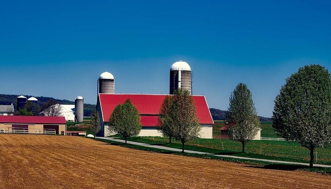 Farm with Empty Field