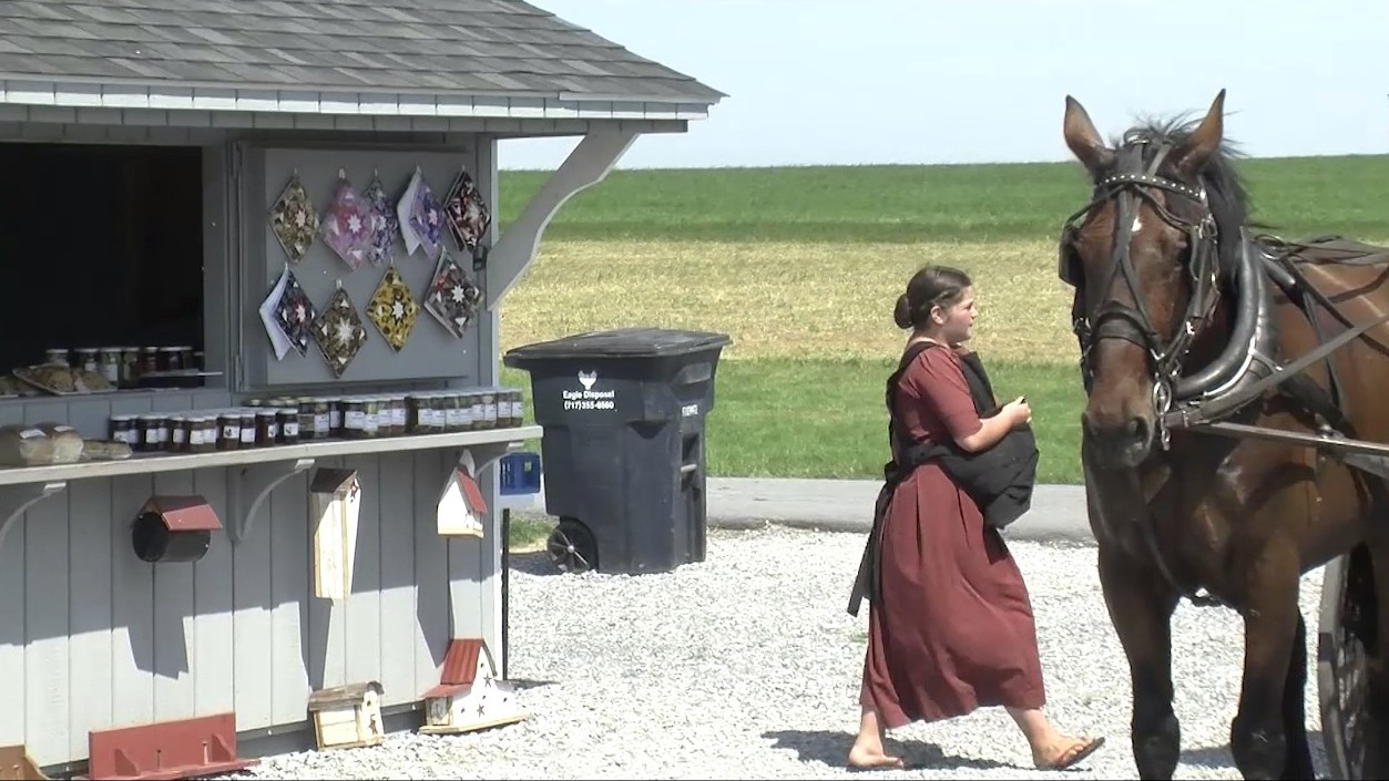 Amish girl at farm stand