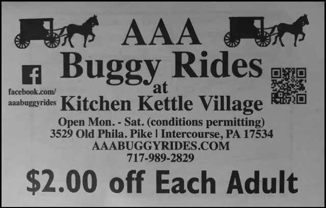 Discount Coupon for AAA Buggy Rides